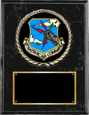 United States Air Force Plaque Group A Style from Military & Government Awards