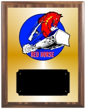 United States Air Force Plaques Group B Style from Trophy Express